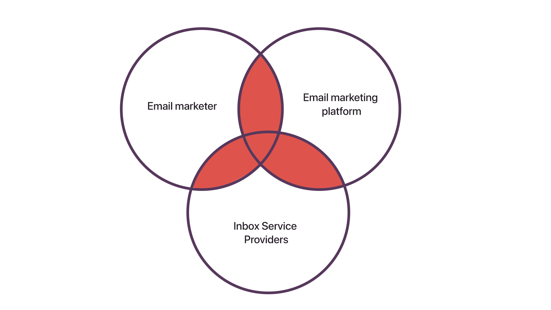 Participants of email marketing process